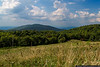 August 29 - The view from Max Patch.