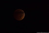 October 8 - Early morning lunar eclipse.  One day, I'll figure out how to shoot these...
