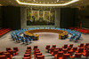 January 11 - Solving the world's problems at the UN Security Council.