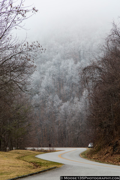 December 31 - Interesting ice formed on the trees along the Blue Ridge Parkway.
