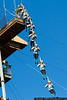 March 3 - Taking a leap of faith at the Whitewater Center.
