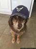 April 12 - Airman Denali reporting for duty!