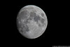 August 12 - Too much light to see much of the meteor shower, so let's shoot the Moon instead!