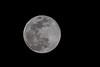 April 7 - Super Corona Moon