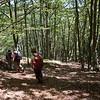 Woodland path to Caldevilla & Soto