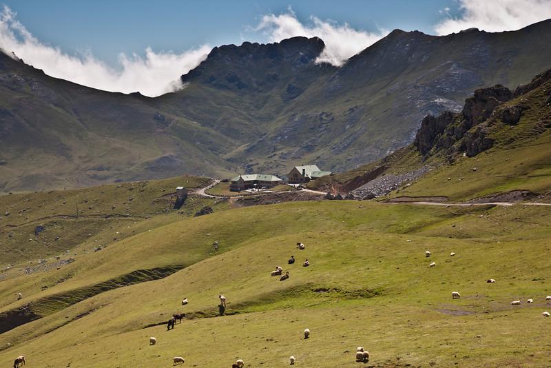 Aliva meadows and refugio