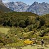 Valle de Argolla