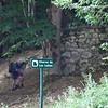 Viewing the wolf trap at Chorco de Los Lobos