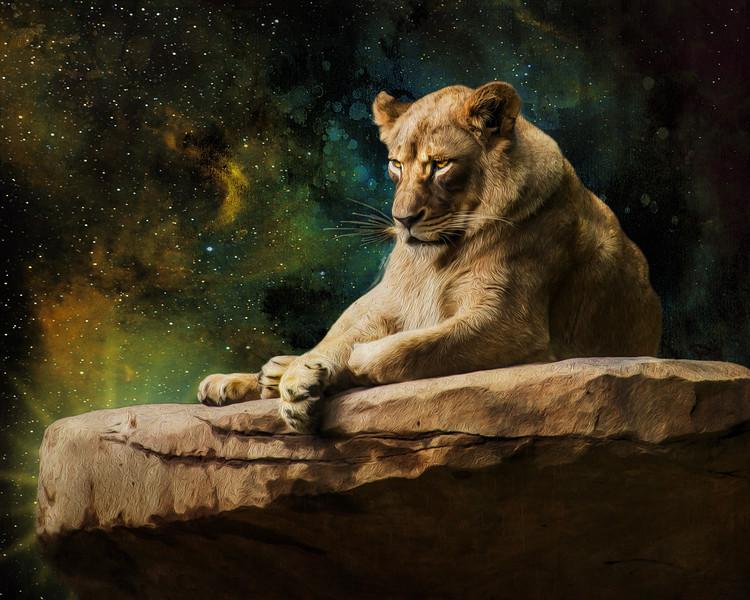 The Majestic Lion