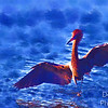 Reddish Egret PhotoPainting