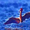 Reddish Egret PhotoPainting