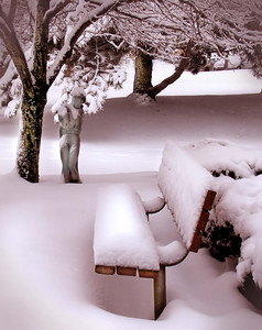 a soft, tinted bench and statue in snow