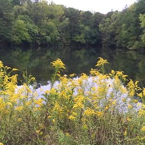 10/1 - Golden Pond