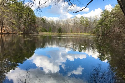 3/26 - Sibley Pond in March
