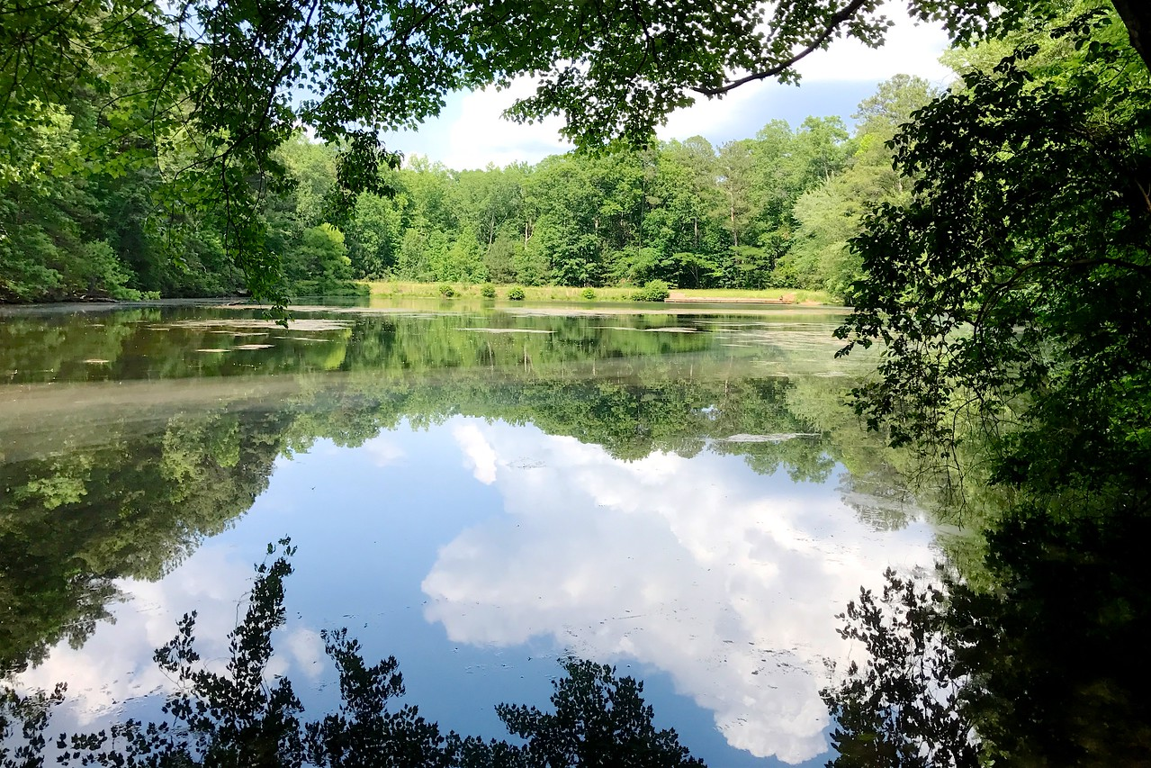 5/19 - Sibley Pond in May