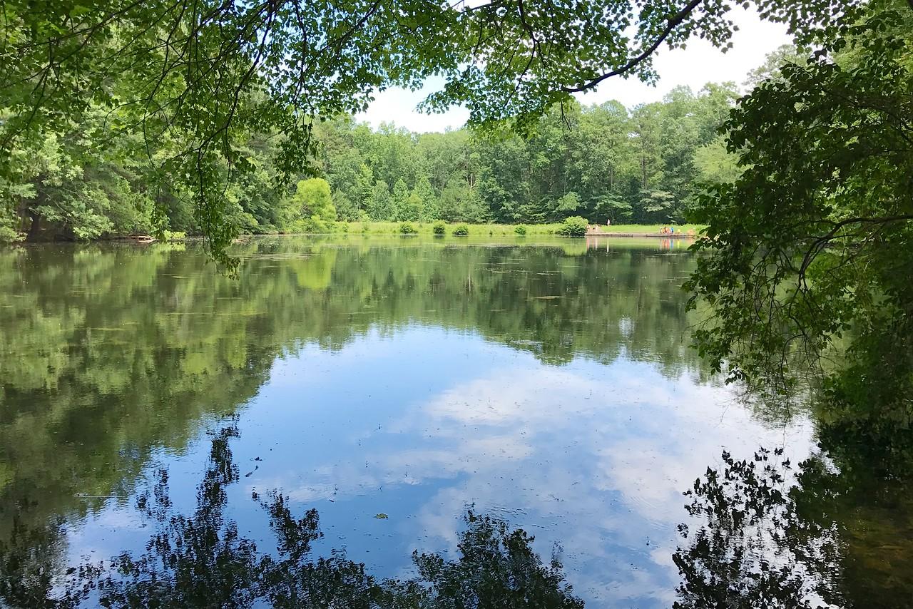 6/25 - Sibley Pond in June