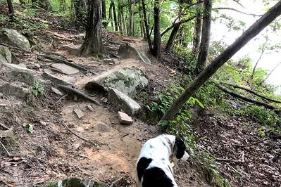 8/14 - Rough trail, pretty view