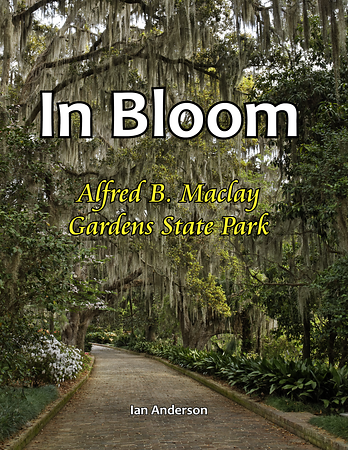 In Bloom: Alfred B. Maclay Gardens State Park
