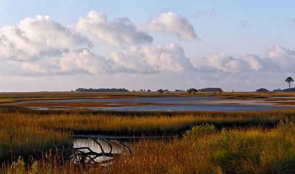 Winter Wetlands - Warm light illuminates the sand and grasses