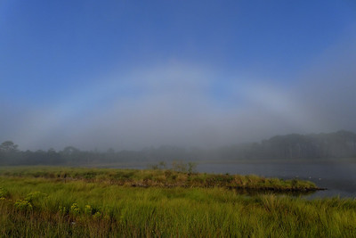 Fogbow over Tower Pond - This rare weather phenomenon occurred on the unlikely date of 10/10/10