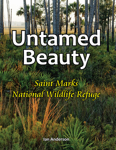 """Untamed Beauty: Saint Marks National Wildlife Refuge"" Book cover"