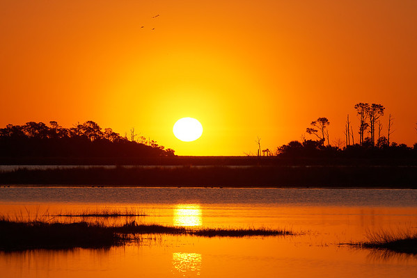 Orange Sky - Warm sunrise and birds over the wetlands