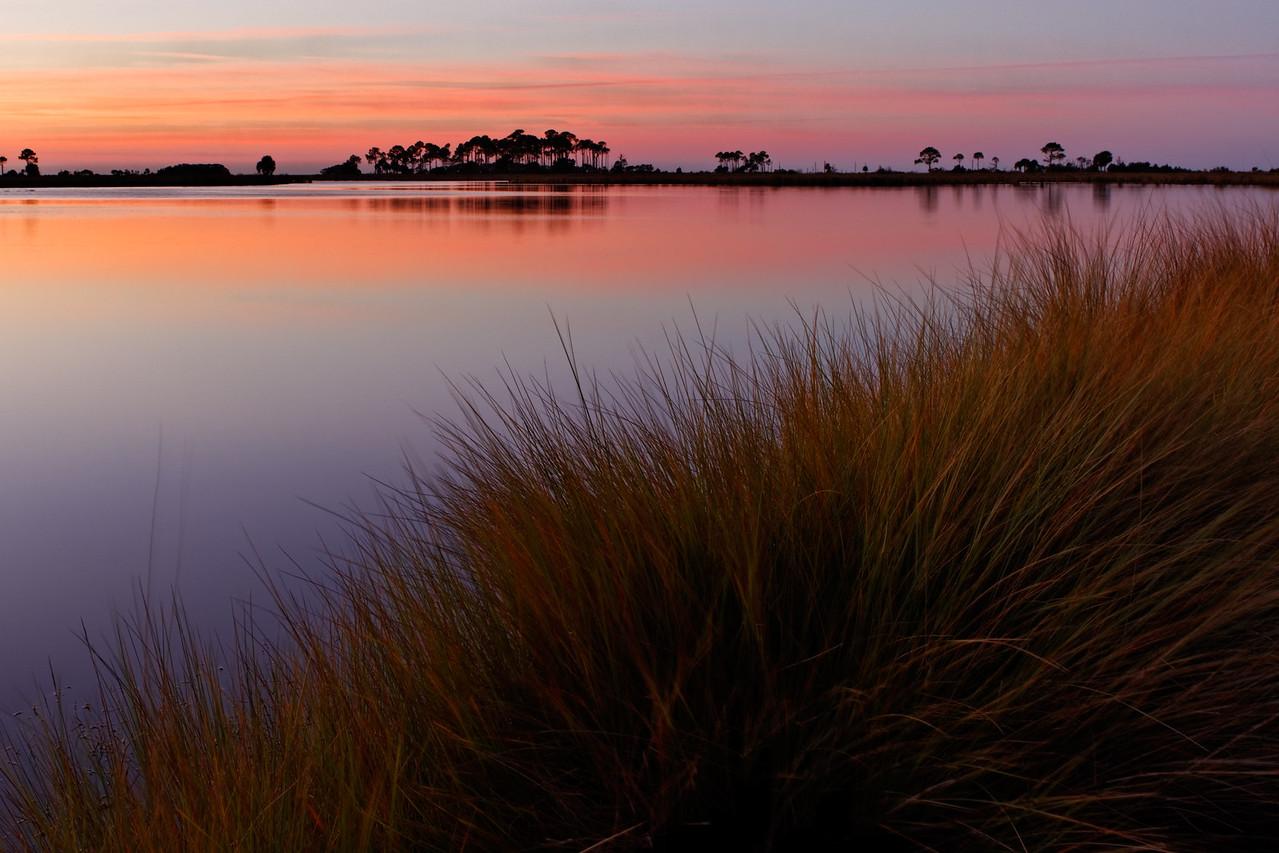 Pastel Morning - Soft hues and grasses near Picnic Pond