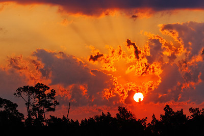Fiery Sunrise - Brilliant sun and clouds over the wetlands