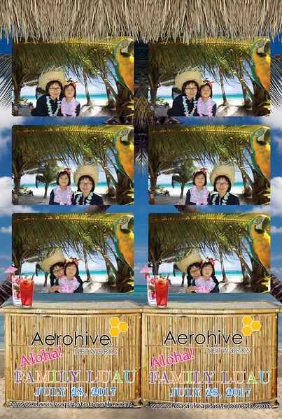 Aerohive Company Party