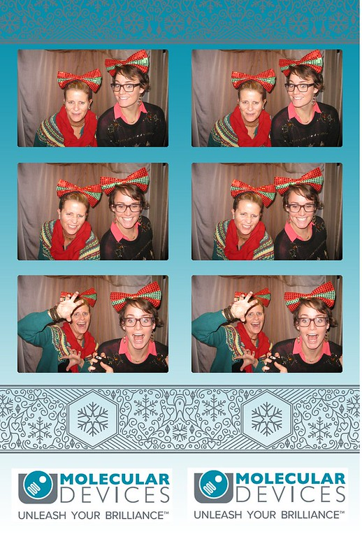 Molecular Devices Holiday Party