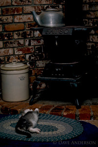 Photo of My brother's cat in front of the coal stove that he uses for central heat. (1993)