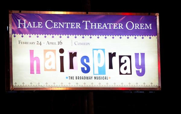 61/365 Hairspray
