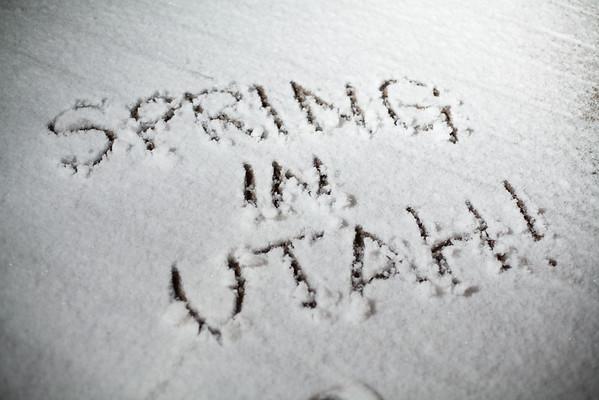 66/365 Spring In Utah