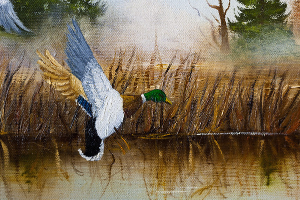 296/365 Painted Duck