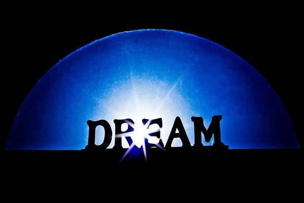 244/365 Dream