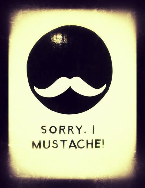 269/365 Sorry, I Mustache!