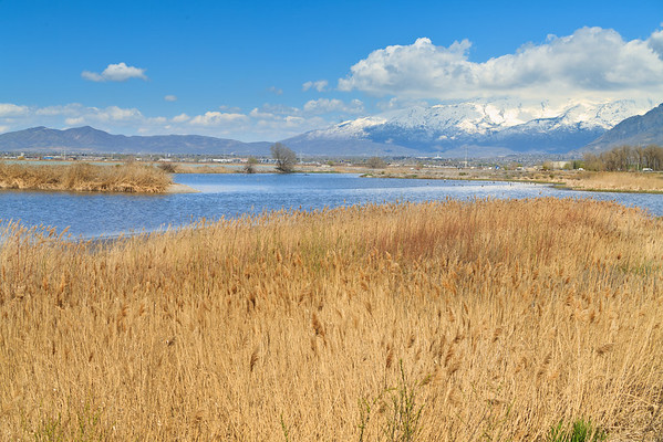 Utah Lake waterfront