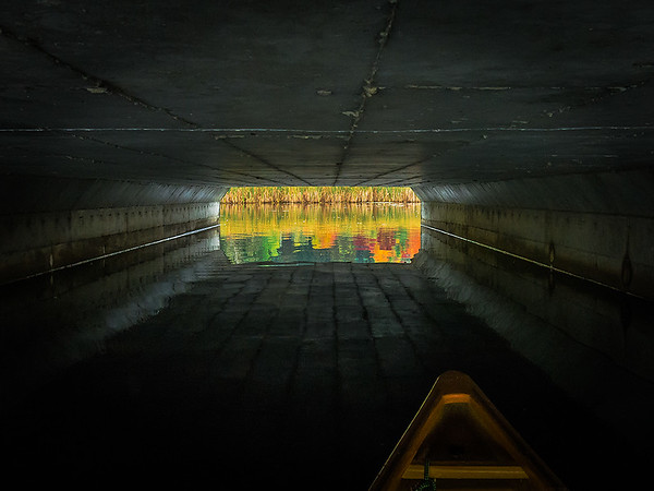 Tunnel Vision by Larry Martin