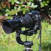 "Modified Manfrotto ""Heavy Lens Support"" with Canon EOS T1i and Canon 70-300 IS USM."
