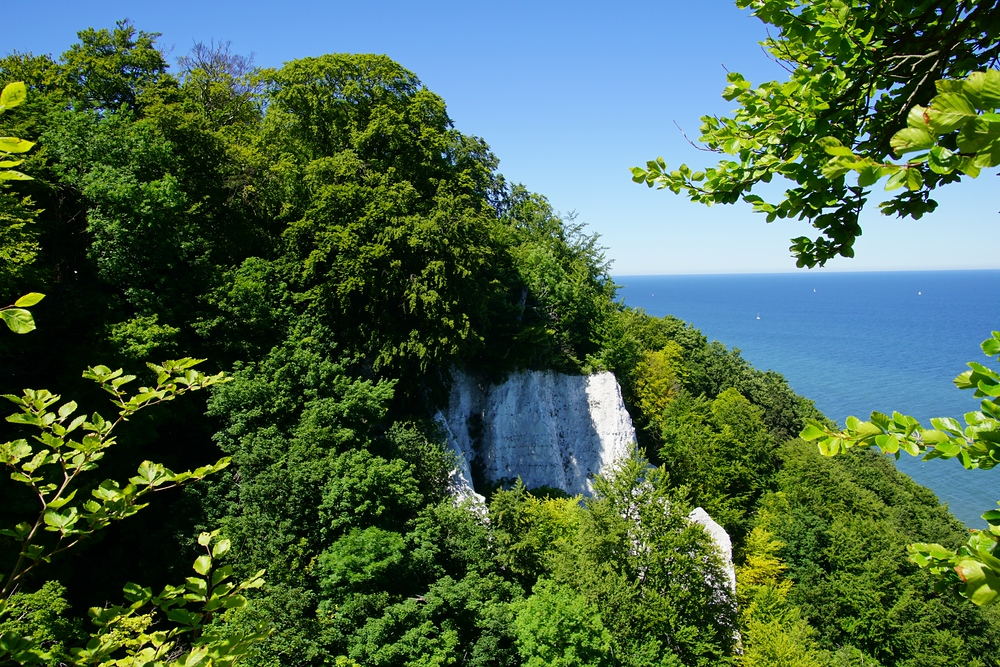 Views of the White Chalk cliffs in Jasmund National Park located on Ruegen Island, Germany.