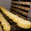 These young cheese just got moved into the underground aging cave to begin the aging process.