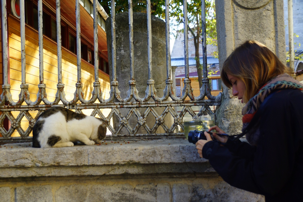 Here is a shot of Audrey taking a photo of this hungry little kitty eating.