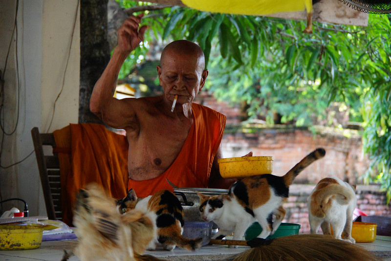 A monk scaring off the roosters while smoking a cigarette - Ayutthaya, Thailand.