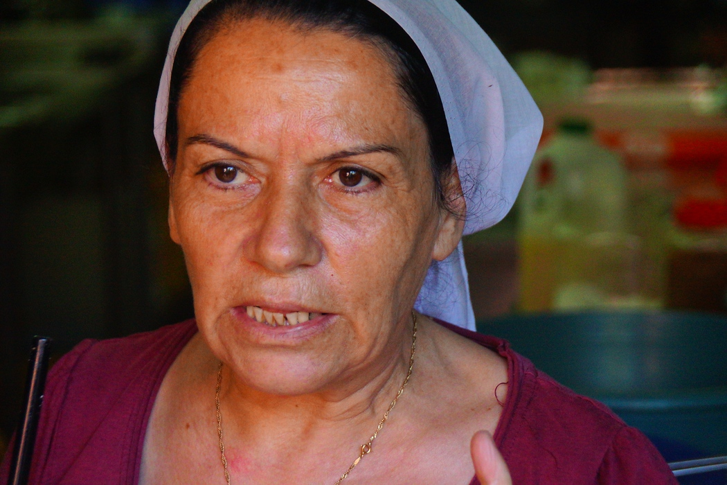 This lovely Druze lady prepared a wonderful feast for us. The dishes kept coming out and even though we were all full we still had room for dessert.