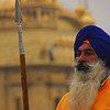 A guard with a most impressive beard stands tall outside of the main entrance to the Harmandir Sahib.