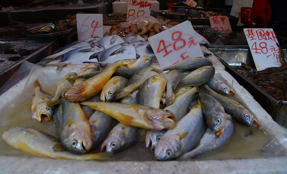 Fresh fish being sold at a local market - Hong Kong, China