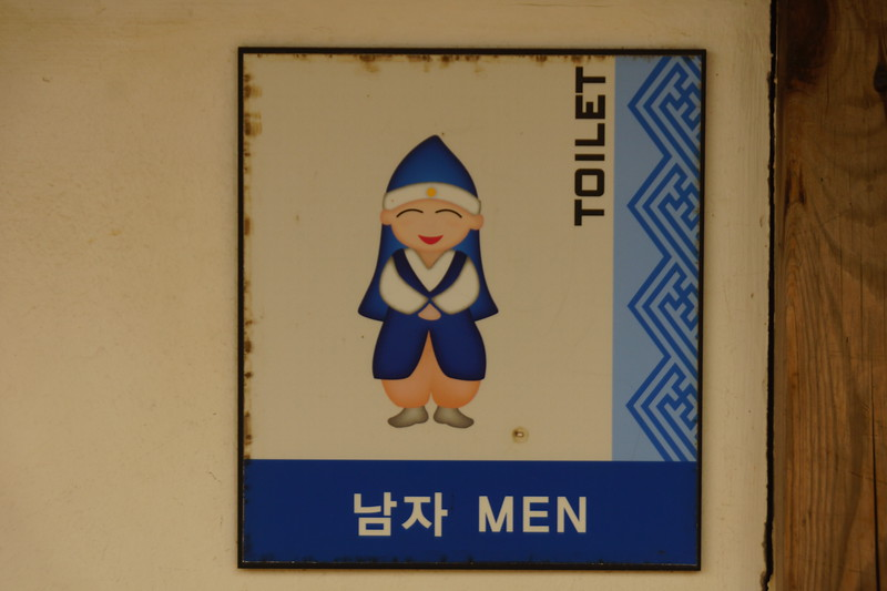 Here is the Korean toilet for men.  If you travel enough in Korea you'll notice that toilets often have colourful, humorous or animated types of signs.