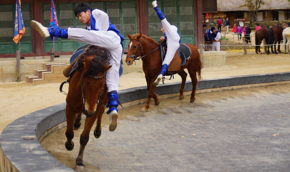 I know personally that I can barely ride a horse normally.  I can't imagine the amount of hours and training that would be required to perform such equestrian feats.