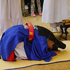The groom bows several times during the traditional Korean wedding ceremony in Yongin, South Korea.