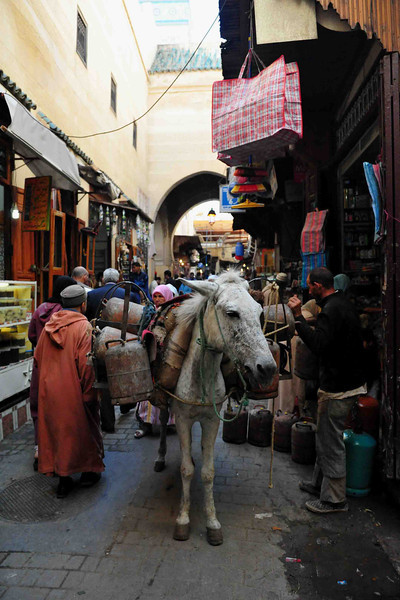 The old part of this spectacular medieval walled city is known as the Fes-el-Bali. Everything that encompasses Moroccan culture and life can be found here.  It is not uncommon for merchants to navigate the narrow streets and bring in needed supplies and fresh food strapped to a donkey.